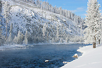 Madison River in Yellowstone National Park during winter
