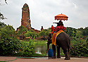 TH00315-00...THAILAND - Visitors to the Ayutthaya Historical Park experiencing elephant rides in view of the massive stupa at Wat Phra Ram.