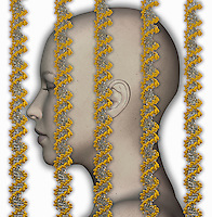 Biomedical illustration of DNA strands superimposed on the head of a woman