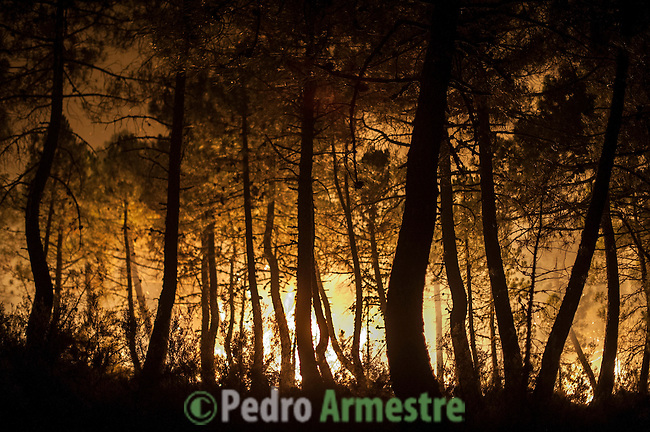 Trees are seen on fire during a wildfire in Torneros de Jamuz near Leon, Spain, on Tuesday Aug. 21, 2012. Some 500 soldiers have been deployed to help battle a wildfire authorities believe was started intentionally and which has burned some 80 sq. kilometers (30. sq. miles) in northern Spain. (c)Pedro Armestre