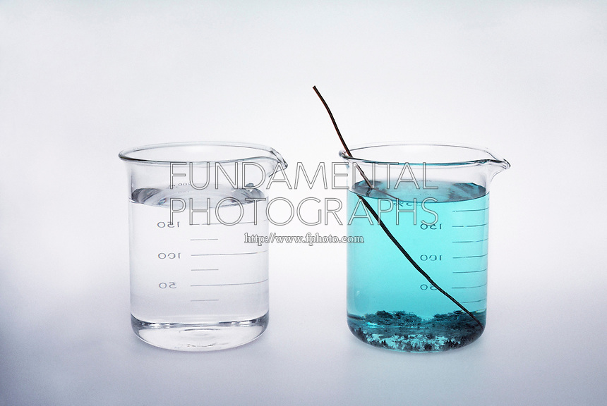 COPPER WIRE IN SILVER NITRATE SOLUTION<br />