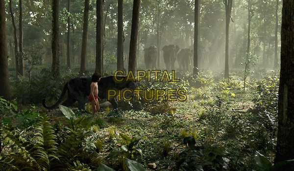 The Jungle Book (2016)<br /> Neel Sethi<br /> *Filmstill - Editorial Use Only*<br /> CAP/FB<br /> Image supplied by Capital Pictures