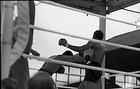 Ali vs Lewis Boxing at Croke Park.19/07/1972<br /> <br /> <br /> google title images of Cassius Clay,<br /> googles images of Cassius Clay,<br /> google image search of Cassius Clay,<br /> google images advanced of Cassius Clay,<br /> google images photos of Cassius Clay,<br /> www.google images of Cassius Clay,<br /> Image of Mohammed Ali in Dublin, Ireland.<br /> Images of Mohammed Ali in Dublin, Ireland.<br /> Picture of Mohammed Ali in Dublin, Ireland.<br /> Pictures of  Mohammed Ali in Dublin, Ireland.v<br /> Pix of Mohammed Ali in Dublin, Ireland.<br /> Pixs of Mohammed Ali in Dublin, Ireland.<br /> Shot of Mohammed Ali in Dublin, Ireland.<br /> Shots of Mohammed Ali in Dublin, Ireland.<br /> photo of  Mohammed Ali in Dublin, Ireland.<br /> <br /> photos of Mohammed Ali in Dublin, Ireland.<br /> google images of Mohammed Ali in Dublin, Ireland.<br /> photo images of Mohammed Ali in Dublin, Ireland.<br /> <br /> google images of Mohammed Ali in Dublin, Ireland.<br /> google images search of Mohammed Ali in Dublin, Ireland.<br /> google image of Mohammed Ali in Dublin, Ireland.<br /> google imags of Mohammed Ali in Dublin, Ireland.<br /> google title images of Mohammed Ali in Dublin, Ireland.<br /> googles images of Mohammed Ali in Dublin, Ireland.<br /> google image search of Mohammed Ali in Dublin, Ireland.<br /> google images advanced of Mohammed Ali in Dublin, Ireland.<br /> google images photos of Mohammed Ali in Dublin, Ireland.<br /> www.google images of Mohammed Ali in Dublin, Ireland.<br /> Image of Mohammed Ali in Dublin Airport, Dublin, Ireland.<br /> Images of Mohammed Ali in Dublin Airport, Dublin, Ireland.<br /> Picture of Mohammed Ali in Dublin Airport, Dublin, Ireland.