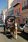 USA, Puerto Rico, San Juan. Horse-drawn Carriage in San Juan, Pueto Rico.