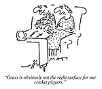 """""""Grass is obviously not the right surface for our cricket players."""""""