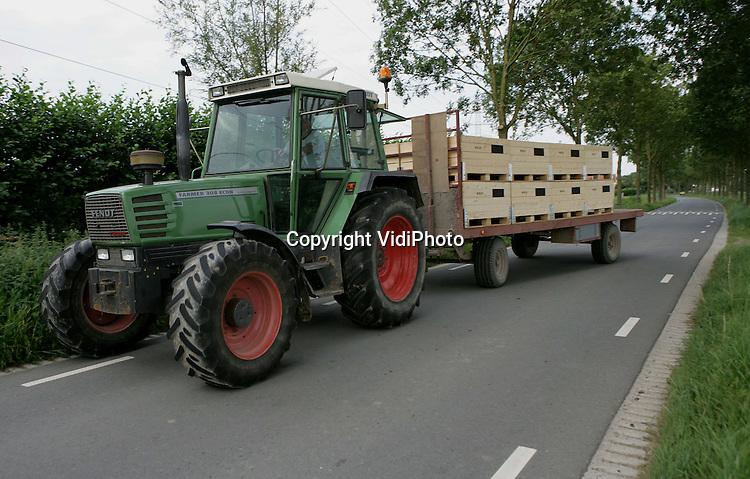 Foto: VidiPhoto..OPHEUSDEN - Fruitteler Wiggelo uit Dodewaard op weg met een lading triumpf-peren van zijn boomgaard naar het bedrijf in Dodewaard.