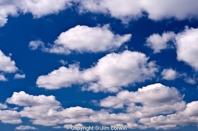 cumulus clouds in blue sky stock photography jim corwin photographer. Black Bedroom Furniture Sets. Home Design Ideas