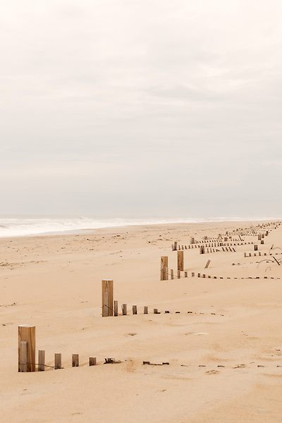 February 26, 2013. Nag's Head, North Carolina. The remnants of sand fences, which are supposed to help rebuild storm blocking dunes, along the shoreline of the Outer Banks.  . Tracing the path of Hurricane Sandy, which wrecked havoc on the northeastern seaboard from October 25-31, 2012. The storm caused flooding and caused an estimated 60 billion dollars worth of damage to affected areas.