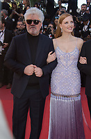 Jessica Chastain &amp; Pedro Almodovar at the premiere for &quot;Okja&quot; at the 70th Festival de Cannes, Cannes, France. 19 May  2017<br /> Picture: Paul Smith/Featureflash/SilverHub 0208 004 5359 sales@silverhubmedia.com