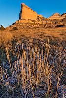 Scotts Bluff National Monument, Nebraska: Prairie grasses and Scotts Bluff at sunrise.
