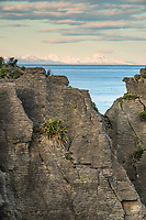 Morning photo of limestone formations, Pancake Rocks, with Southern Alps in background, Paparoa National Park, Buller Region, West Coast, New Zealand, NZ