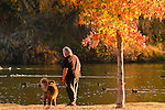 Man and his dog watching the birds at Hart Memorial Park, Bakersfield, California.