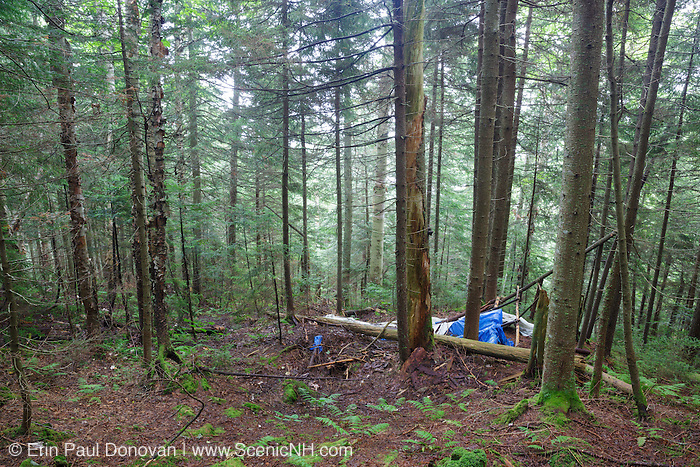 Human impact on the northern slopes of Mount Jim in Kinsman Notch of Woodstock, New Hampshire USA during the summer months