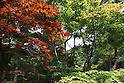July 20, 2010 - Niiza, Japan - Heirinji's forest, part of the Rinzai temple of the Myoshin-ji branch located in Niiza city, Japan, is pictured on July 20, 2010. Visiting the temple is part of the 'True Japan Saitama - Zen Medidation and Buddhist Vegetarian Cuisine' tour, organized by the travel agency JTB for leisure travelers.