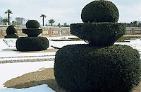 Topiary hedges have been clipped in the shape of pawns and a knight from a chess set