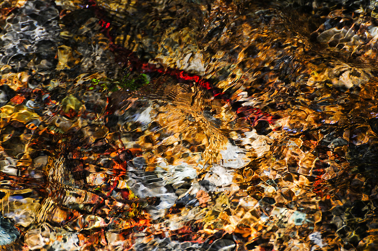 &quot;AUREATE TREASURE&quot;<br />
