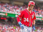 21 June 2015: Washington Nationals outfielder Bryce Harper returns to the dugout after being called out on strikes in the 4th inning against the Pittsburgh Pirates at Nationals Park in Washington, DC. The Nationals defeated the Pirates 9-2 to sweep their 3-game weekend series, and improve their record to 37-33. Mandatory Credit: Ed Wolfstein Photo *** RAW (NEF) Image File Available ***