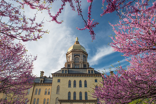 April 25, 2017; Main Building, Golden Dome, spring 2017.  (Photo by Barbara Johnston/University of Notre Dame)