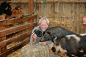 John Daniels, animal photographer, working with pigs whilst lamas look on, Fishers Farm Park, Wisborough Green, West Sussex