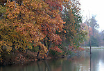 Autumn leaves on Burke Lake Virginia,