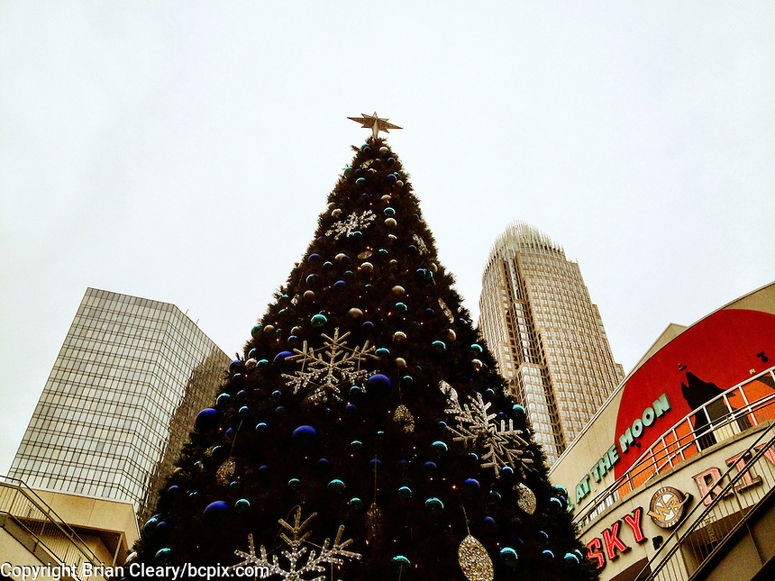 Christmas tree and buildings, iPhone photo from the archive of Florida-based freelance photographer Brian Cleary.  (Photo by Brian Cleary/ www.bcpix.com )