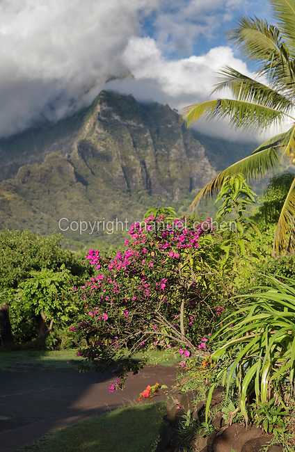 Mountainous landscape seen from Temetiu village, near Atuona, on the island of Hiva Oa, in the Marquesas Islands, French Polynesia. Picture by Manuel Cohen