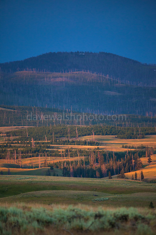 Sunrise on the Blacktail Deer Plateau, northern Yellowstone National Park, Wyoming.