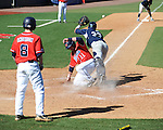 Ole Miss' Zach Kirksey (11) scores vs. North Carolina-Wilmington catcher Drew Farber (33) at Oxford-University Stadium in Oxford, Miss. on Sunday, February 26, 2012. Ole Miss won 10-5..