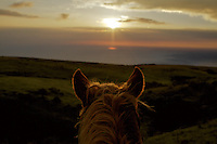 Sunset from sitting on horse named Billy at Kohala Hawaii