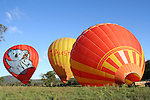 20111203 Hot Air Balloon Gold Coast 03 December