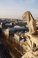 Chimera, overlooking the Hôtel-Dieu de France, Notre Dame de Paris, 1163 ? 1345, initiated by the bishop Maurice de Sully, Ile de la Cité, Paris, France. Picture by Manuel Cohen