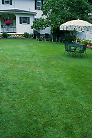 Well-kept backyard lawn with patio furniture, umbrella & white suburban house in background