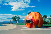Penticton, Okanagan Valley, BC, British Columbia, Canada - Giant Peach Refreshment Concession Stand at Okanagan Lake, Snack Bar at Beach