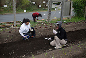 DIG youth Vianey Martinez, left, and Nilisha McPhaul at SEEDS Community Garden, Durham, NC, Saturday, March 26, 2011.