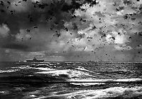 A Japanese bomb splashes astern of a U.S. carrier as the enemy plane pulls out of its dive above the carrier.  In the center is another enemy plane that has made an unsuccessful dive.  Battle of Santa Cruz.  October 26, 2942.  (Navy)<br /> NARA FILE #:  080-G-20989<br /> WAR &amp; CONFLICT BOOK #:  977