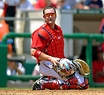 17 June 2006: Brian Schneider (left), catcher for the Washington Nationals, rests a moment during a game against the New York Yankees at RFK Stadium, in Washington, DC. The Nationals overcame a seven run deficit to win 11-9 in the second game of the interleague series...Mandatory Photo Credit: Ed Wolfstein Photo...