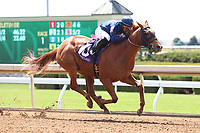 LEXINGTON, KY - APRIL 07: #10 Fairyland and jockey Julio Garcia win the 1st race, maiden 2 year olds $60,000 for owner Mrs. John Magnier, Michael Tabor and Derrick Smith and trainer Wesley Ward at Keeneland Race course.  April 07, 2017, Lexington, Kentucky. (Photo by Candice Chavez/Eclipse Sportswire/Getty Images)