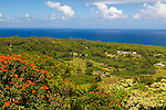 Maui, Hawaii.  The view from the Wailua lookout along the Road to Hana.