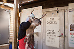January 2, 2012. Chapel Hill, NC.. A deer head left by a hunter is pulled out..Norman's Deer Processing & Sausage Making has been serving private customer's for over 20 years. Hunters bring their deer in to be processed into all cuts of venison and several types of sausage.