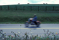 Motorcyclist zooms past horse farm pasture.