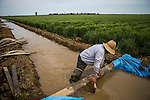 ZAMORA, CA - APRIL 4, 2015:  Juan Silva manages a temporary dam delivering groundwater to a barley field on Fritz Durst's farm. Durst farms 12 different crops and raises cattle on 6000 acres. CREDIT: Max Whittaker for The New York Times