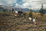 A photo of cowboys and cowgirls herding horses in the high country. Cowboy Photos, riding,roping,horseback