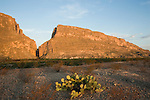 Santa Elena Canyon in early morning, 1500 foot tall cliffs of limestone, Big Bend National Park, Texas.