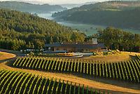 Vineyard Aerials