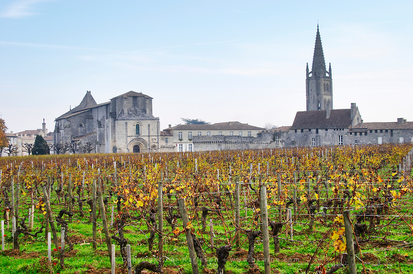 Vineyard. Collegiale church. Twer of the monolithic church. Chateau Clos Fourtet, Saint Emilion, Bordeaux, France