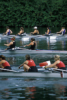Scullers on Thames River London Ontario Canada