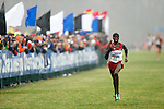 21 NOV 2011: Lawi Lalang (11) of the University of Arizona heads down the finishing strait during the Division I Men's Cross Country Championship held at the Wabash Valley Family Sports Center in Terre Haute, IN. Lalang placed first to win the national title. University of Wisconsin won the team national title. Brett Wilhelm/NCAA Photos.