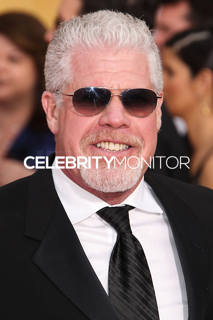 LOS ANGELES, CA - JANUARY 18: Ron Perlman at the 20th Annual Screen Actors Guild Awards held at The Shrine Auditorium on January 18, 2014 in Los Angeles, California. (Photo by Xavier Collin/Celebrity Monitor)