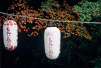 Japanese lanterns embody a simple elegance and are at home being placed outside in the garden.