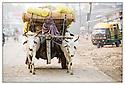 Inde<br /> Varanasi<br /> Commer&ccedil;ant allant au march&eacute;.